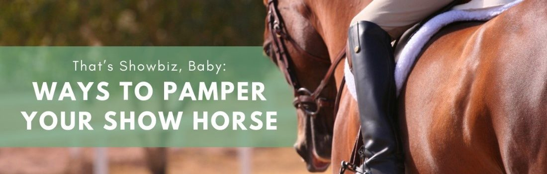 That's Showbiz, Baby Ways to Pamper Your Show Horse