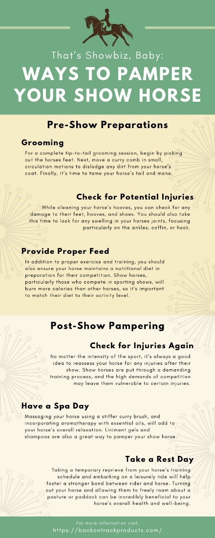 Ways to Pamper Your Show Horse infographic