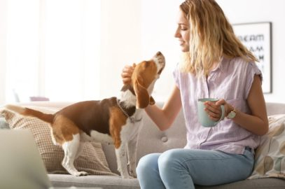 Six Surprising Health Benefits of Owning a Dog