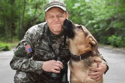 Dogs With Jobs: Different Types of Working Dogs